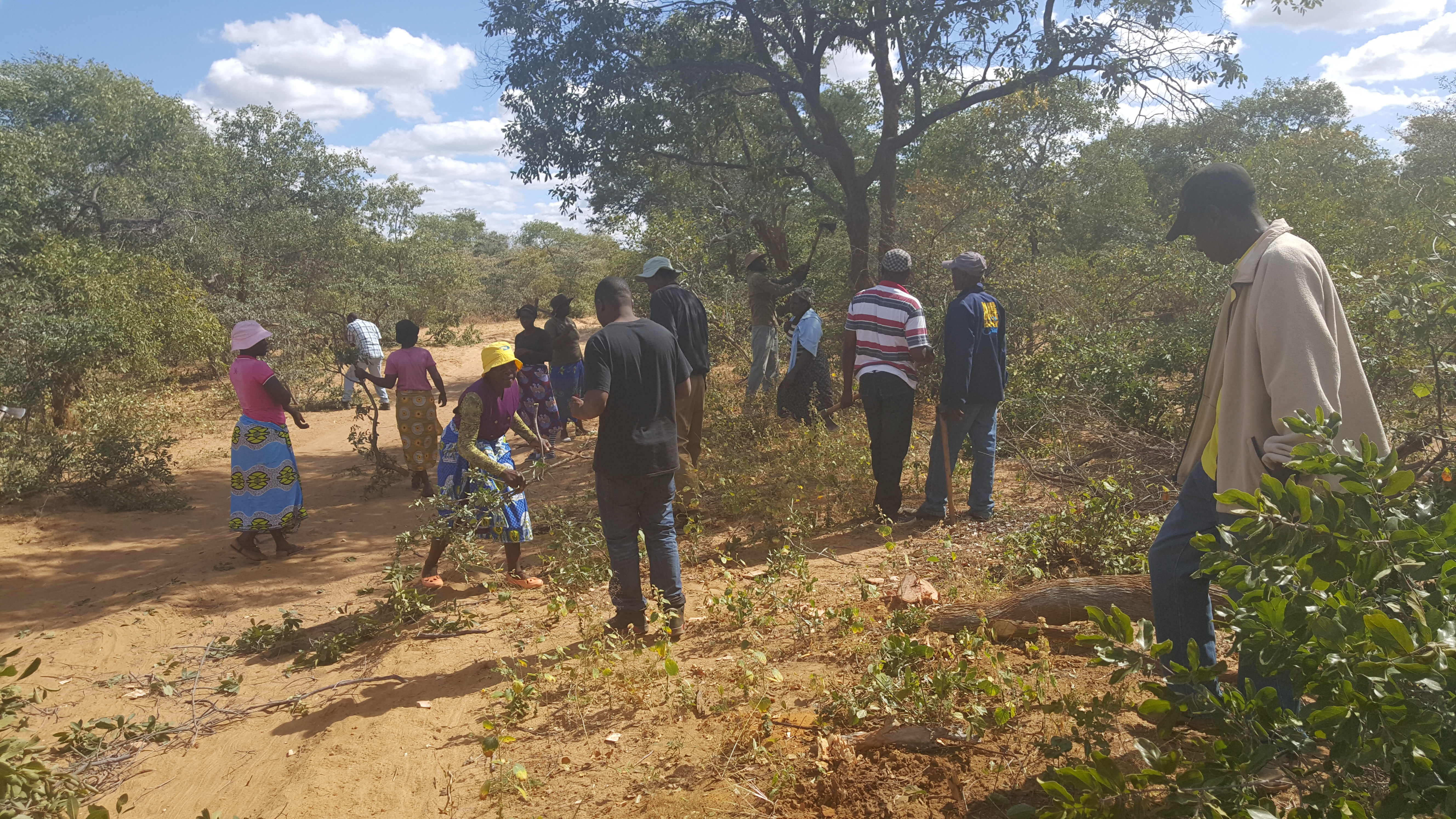 You are currently viewing Tsholotsho community peace clubs strive to end water conflicts through Amalima