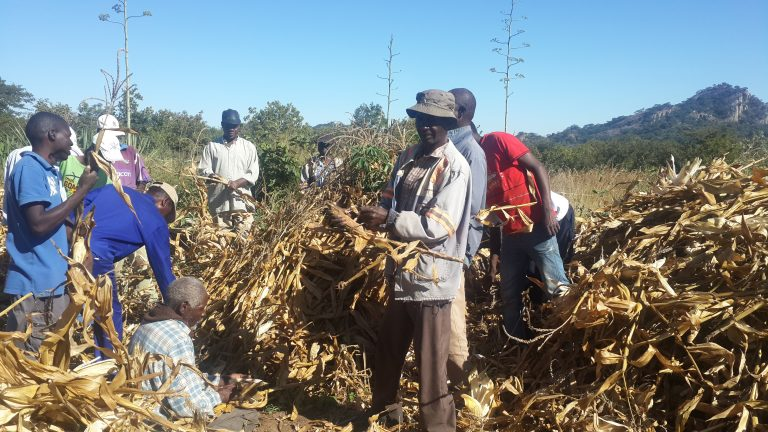 Traditional leaders take lead in peace building through nhimbes