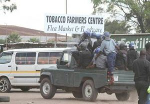 Heal Zimbabwe condemns police attack on tobacco farmers.