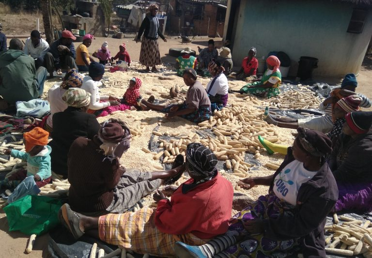 Community members from Masvingo castigate political parties for violent primary elections……. vow to intensify peace campaigns ahead of elections