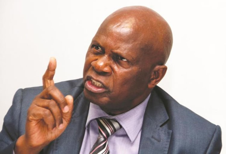 Patrick Chinamasa's comments regrettable