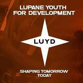 Heal Zimbabwe partner, Lupane Youth for Development moves to end natural resource conflicts in Lupane